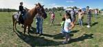 Image of Pony Rides